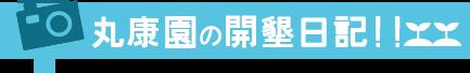 丸康園の開墾日記!!